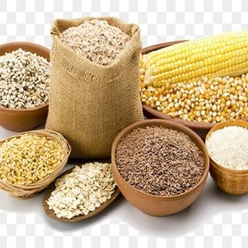 Cattle Feed Companies in Coimbatore, Tamilnadu, India